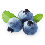blueberries_PNG34