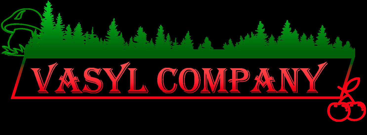 Vasyl Company